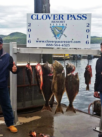May-24-2016-Oasis-Alaska-Charters-With-Captain-Murray