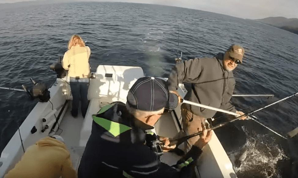 Fishing in Ketchikan Alaska with Oasis Alaska Charters YouTube